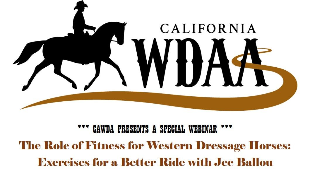 The Role Of Fitness For Western Dressage Horses By California Western Dressage Association